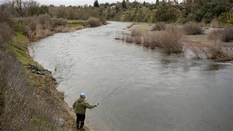 Fishing Line: Variety – conditions, hot spots and what's