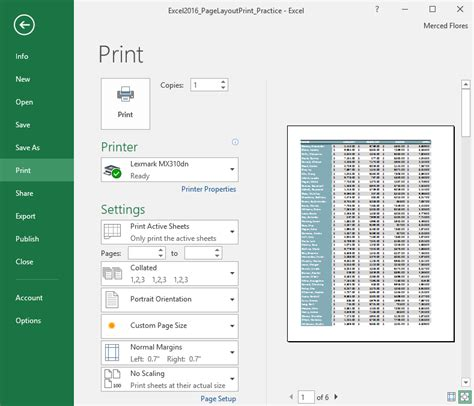 Excel 2016: Page Layout and Printing - Page 1