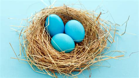 Eggs Wallpapers   HD Wallpapers   ID #11615